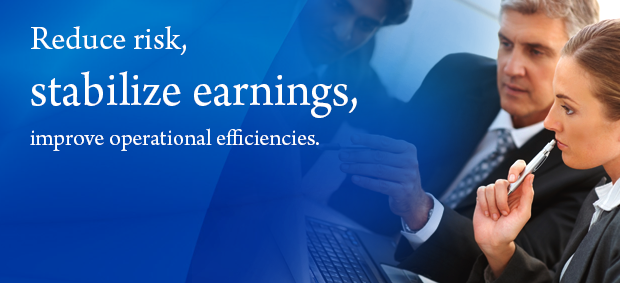 Reduce risk, stabilize earnings, improve operational efficiencies.